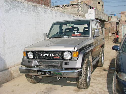 punjab land record manual in punjabi