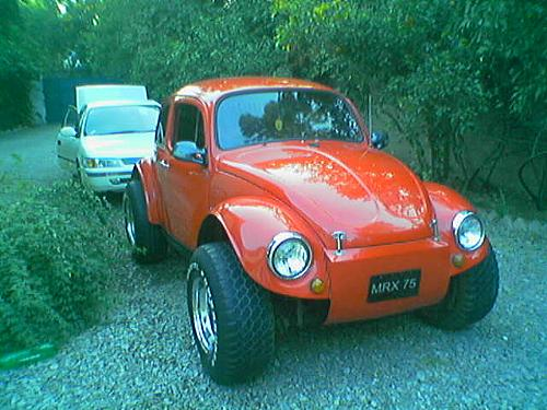 Volkswagen Beetle - 1966 Monster Bug Image-1
