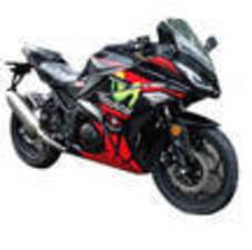 New OW Ninja 300cc